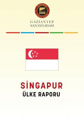Singapur Ülke Raporu 2020