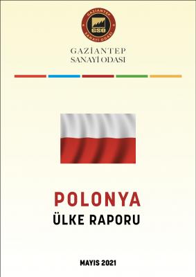 Polonya Ülke Raporu 2020