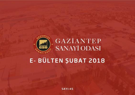 ŞUBAT-1  2018